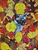Diana_S_Catz_16_Playing_with_Leaves.jpg