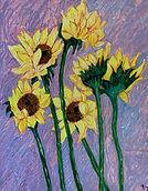 Diana_S_Catz_17_Paulas_Sunflowers_.jpg