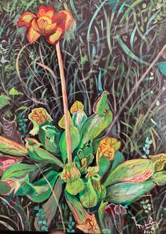 Wild Euphony(2019), Acrylic on canvas, 18x24