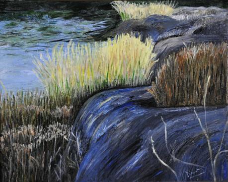 Grasses of Pelham Bay Park (2015), Acrylic on canvas, 16x20