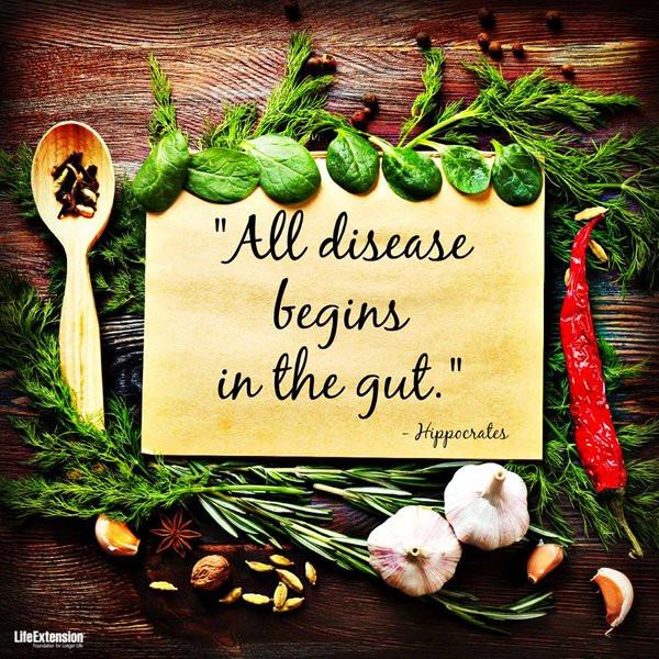 food - gut health