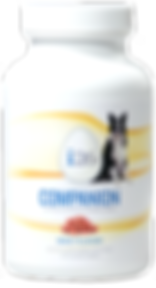 i26 Companion, dogs, pets, chewables, supplement, skin, coat, oral, digestive, health, i26 for health
