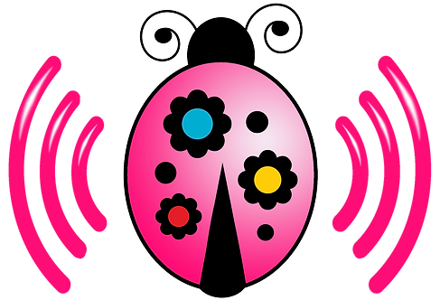 Ladybug Pink- Unlimited Talk, Text & 4g Data