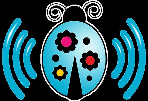 Ladybug Blue Internet Start Package