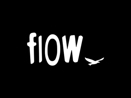 ABC's of Surfing: flow & flow Boards