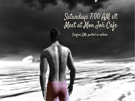 Saturday Morning Surfari from MJC Surf Club
