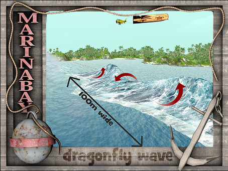 ABC's of Surfing: Dragonfly by Marina Bay