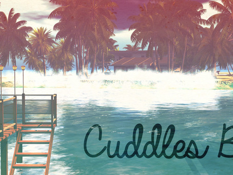 ABC's of Surfing: Cuddles Bay