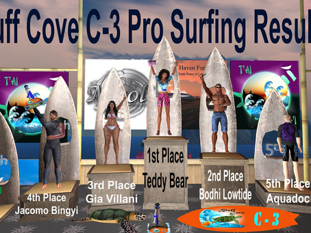 Bluff Cove C-3 Pro Surfing Competition Results_November 2019