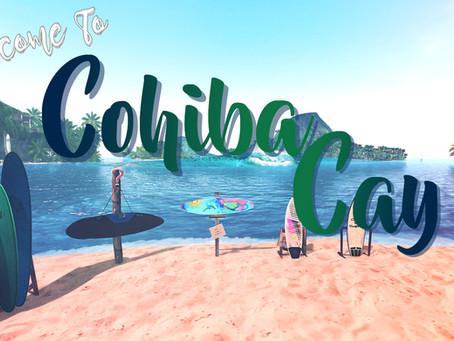 ABC's of Surfing: Cohiba