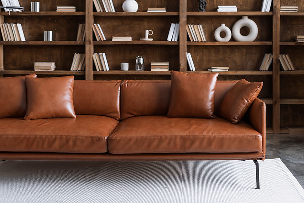 Comfortable sofa standing in library against collections books on bookshelves. Brown leath