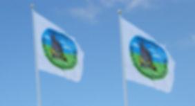 logoflagga