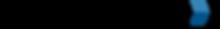 HandySCAN_color_EN.png