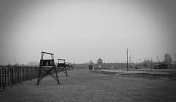 Birkenau Concentration Camp