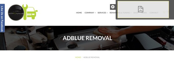AdBlue Cheat System - Dodgy Website!
