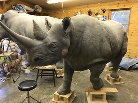 mold making, sculpting, and skin textures