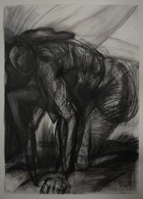 Metamorphosis Charcoal, graphite,waterco