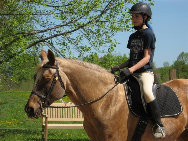45 Minute Private Riding Lesson