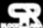BlockPRAsia Logo Whtie 2.png