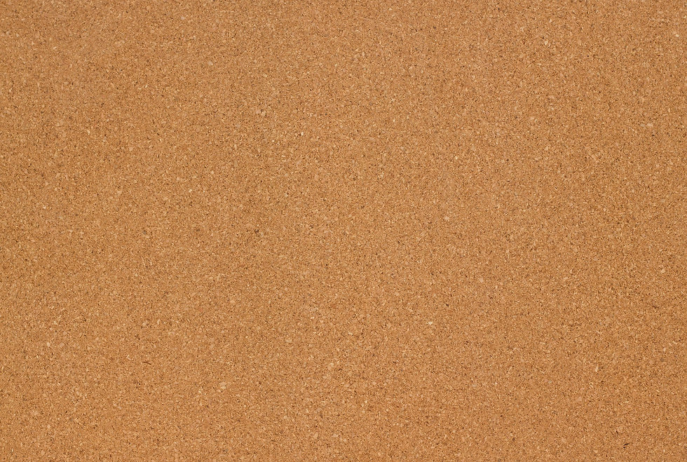 Cork board.jpg