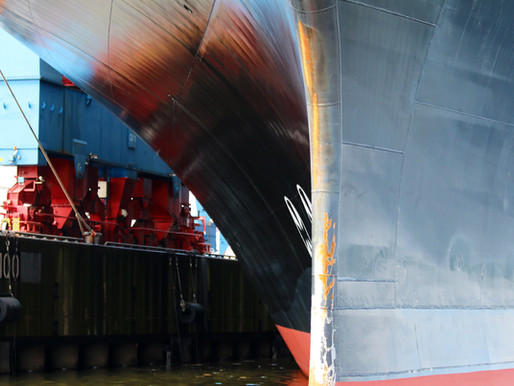 CPPS and IMO organize virtual regional workshop on biofouling management