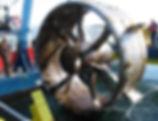 Aquaculture.jpg