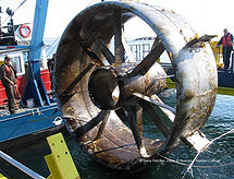 Monitoring biofouling in the offshore renewable energy industry