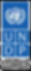 UNDP transparent black.png