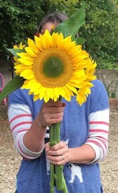 August 2019_Giant Sunflower Photo.JPG