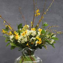 narcissi in vase