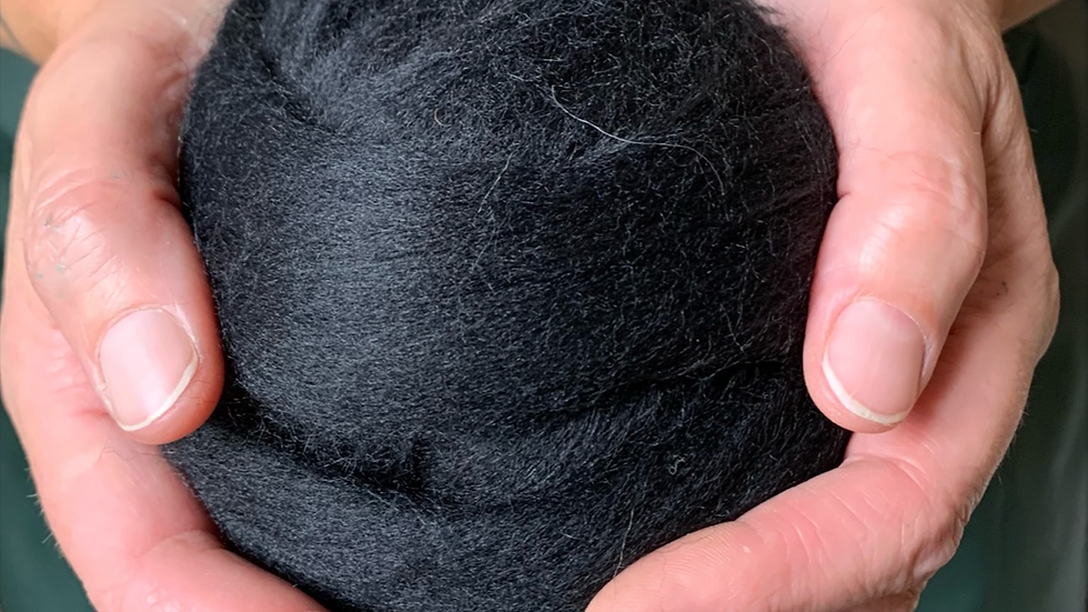 Blue Faced Leicester  Lightening White or Raven Black wool tops or roving
