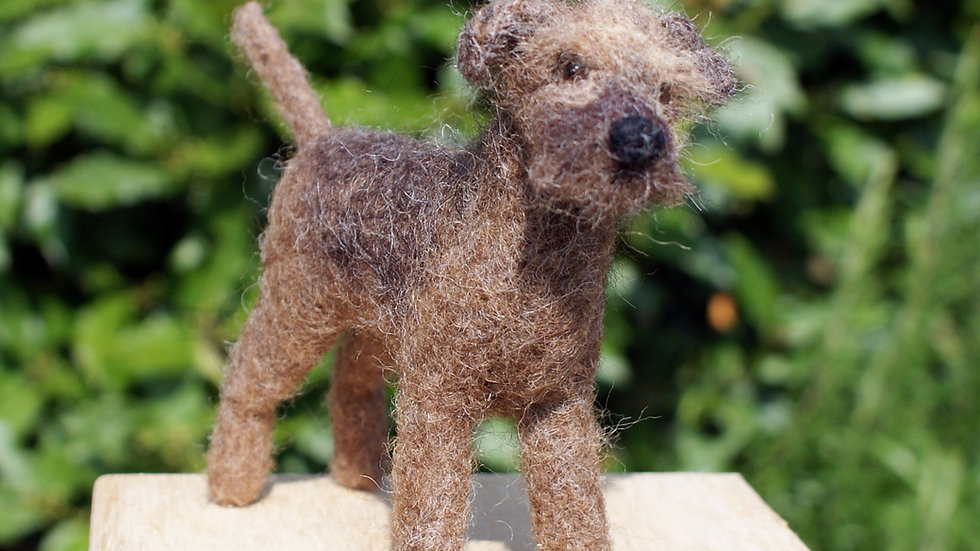 "Border Terrier dog  needle felting kit -  ""oh so very challenging""kit"