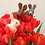 Thumbnail: Bunnie needle felting kit  -  makes 2 rabbits - great for beginners