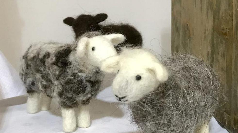 Sheep needle felting kit -a choice of Herdwick, Jacob or Black Welsh Mountain