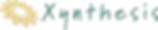 logo xynthesis.png