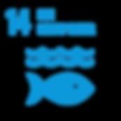 SDG_Icons_Inverted_Transparent_WEB-14.pn