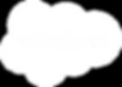Salesforce Logo - White.png