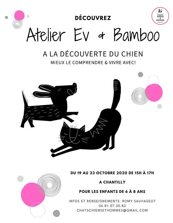 Ev & bamboo Life (2).png