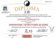 Diplôme d'instructeur et de thérapeute de Qi Gong