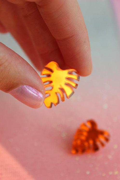 Orange Mini Monstera