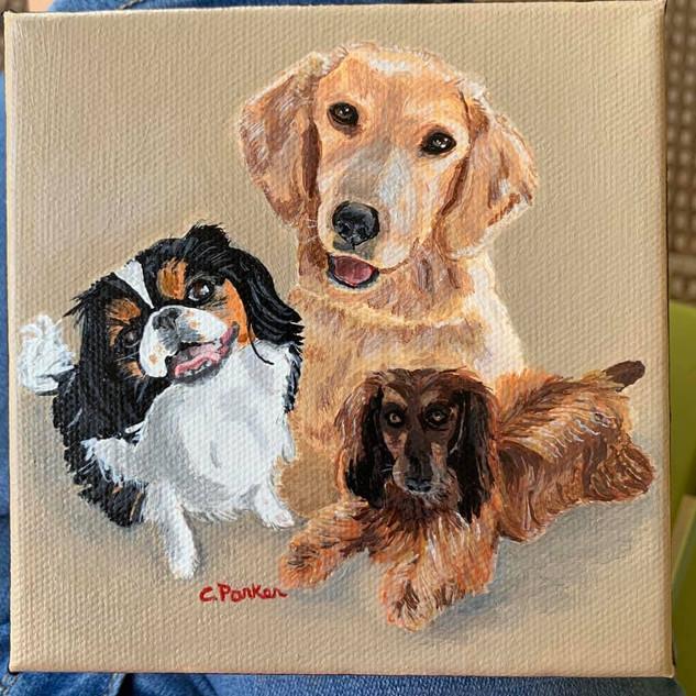 THREE DOG FAMILY