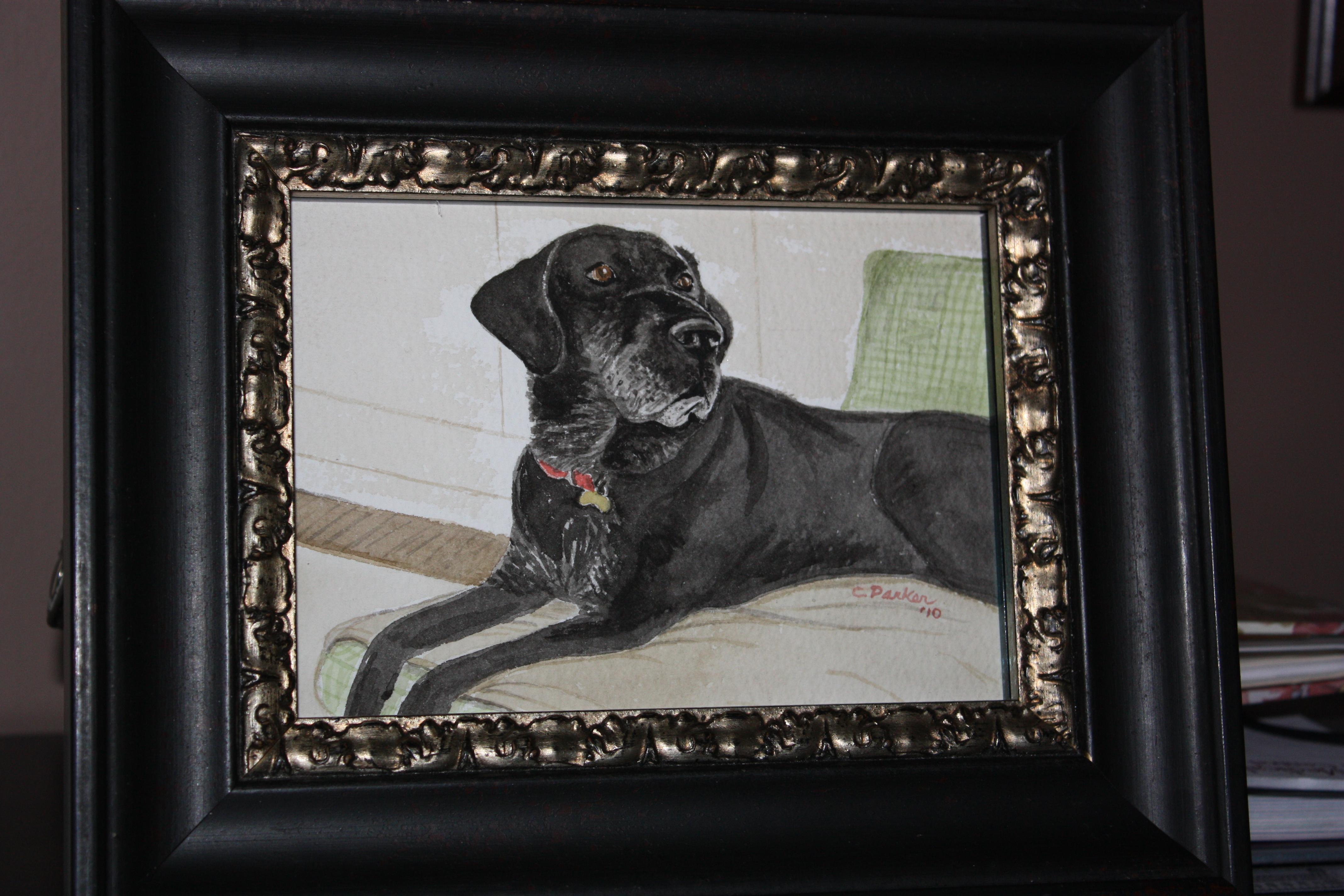 Judge - Dog Watercolor