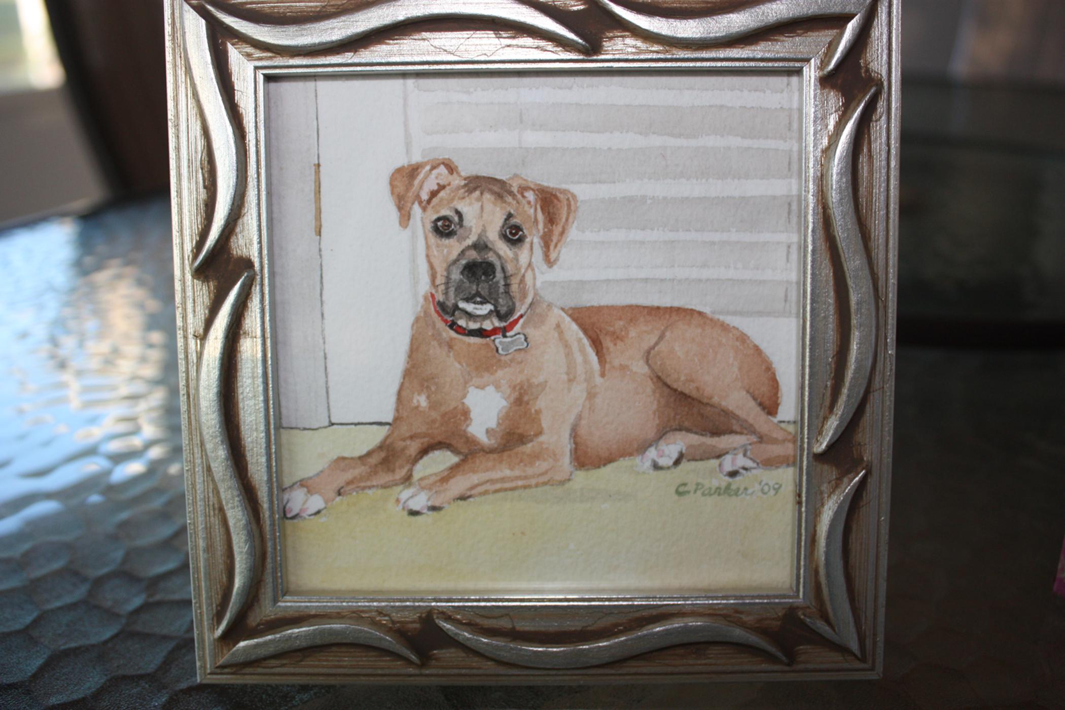 Spud - Dog Watercolor