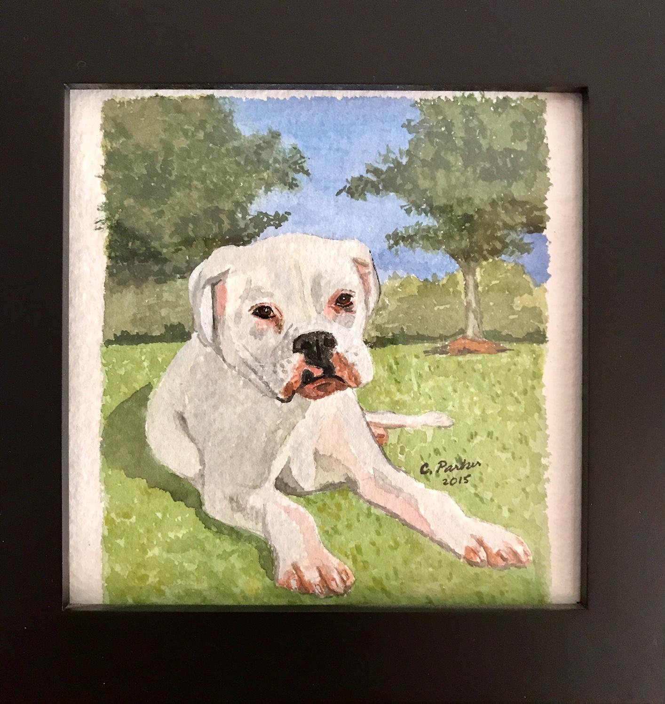 Stella - Dog Watercolor