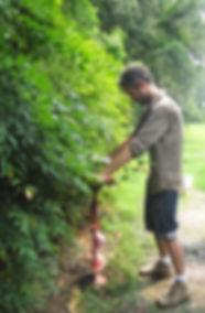 Paysagiste, jardin , toulouse, aménagement jardin , aménagement jardin, paysage, PRE, baptiste salliou , design vegetal
