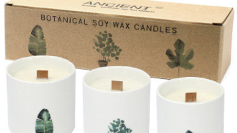 Victorian Peony Large Botanical Candles