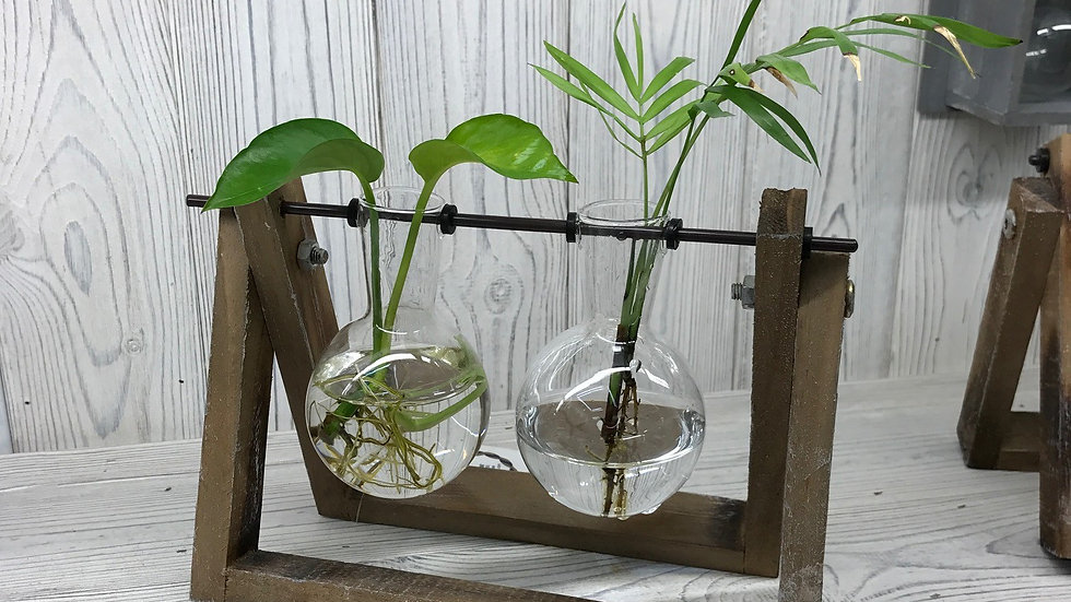 Hydraponic Home - 2 Pot Wooden Stand