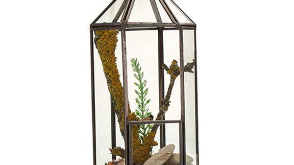 Glass Terrarium - Lantern Shape