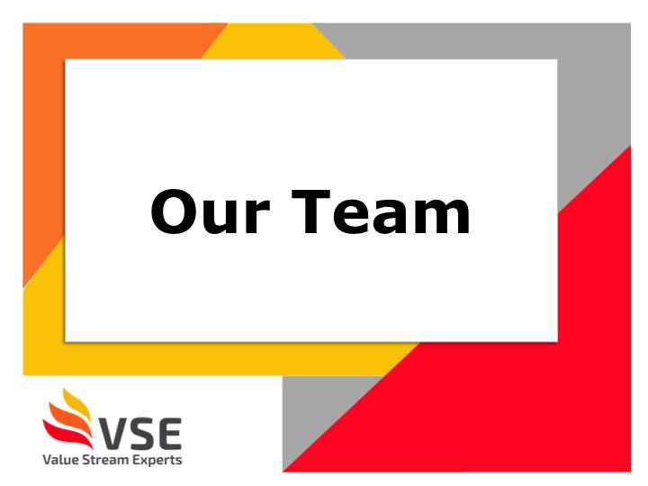 VSE Team