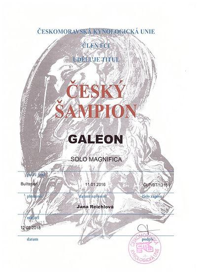 Galeon Solo Magnifica